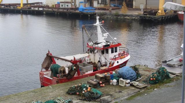 Utsikt fra Fiskernes vei