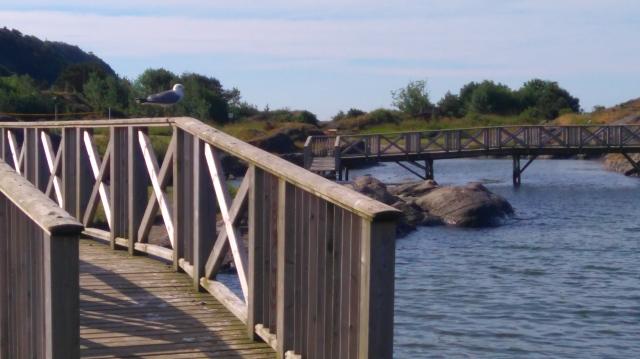 Krogshavn ligger ved sjøen og har gangbruer, badetrapper, en liten strand samt to store gressletter